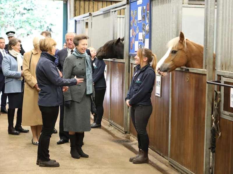 World Horse Welfare (WHW)