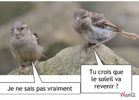 """Résultat de recherche d'images pour """"soleil où es tu   humour"""""""
