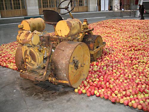 """Les pommes du """"104"""""""