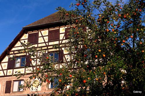 Dieffenthalen Alsace : l'hôtel