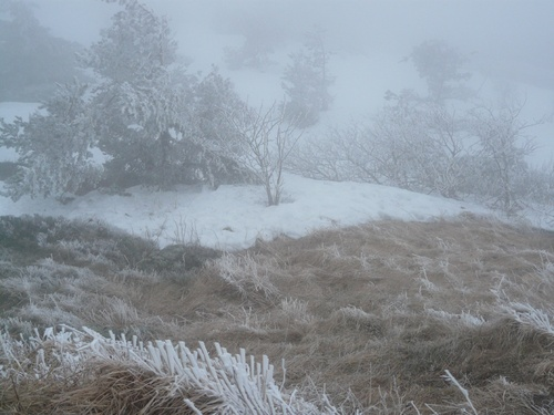 Froid et brouillard !