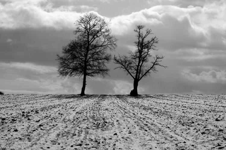 Balade hivernale autour de Roanne #10  Pouilly les Nonains, janvier 2013