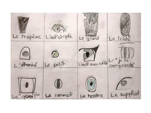 Les différents yeux
