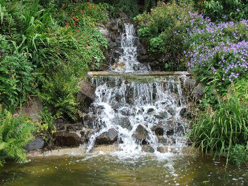 cascade dans le jardin des fougères