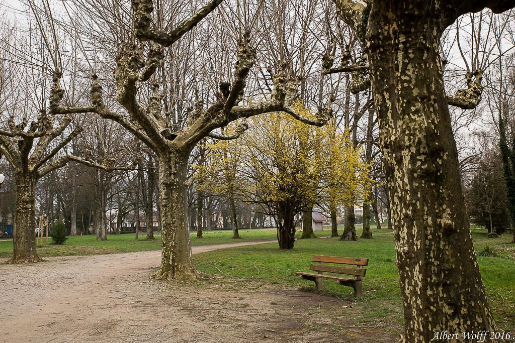 Tour du parc - Part1