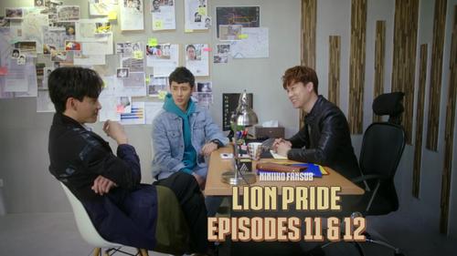 Lion Pride 11 & 12 !