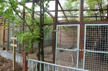 Parc animalier Bouillon 2013 enclos 075