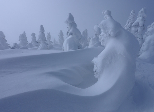 Snow monsters --