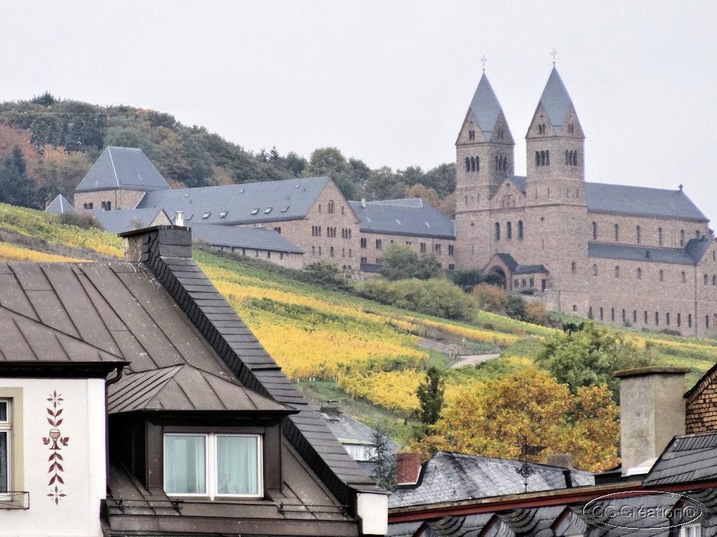"""Croisière """"romantique"""" sur le Rhin ... en diaporama (5)"""