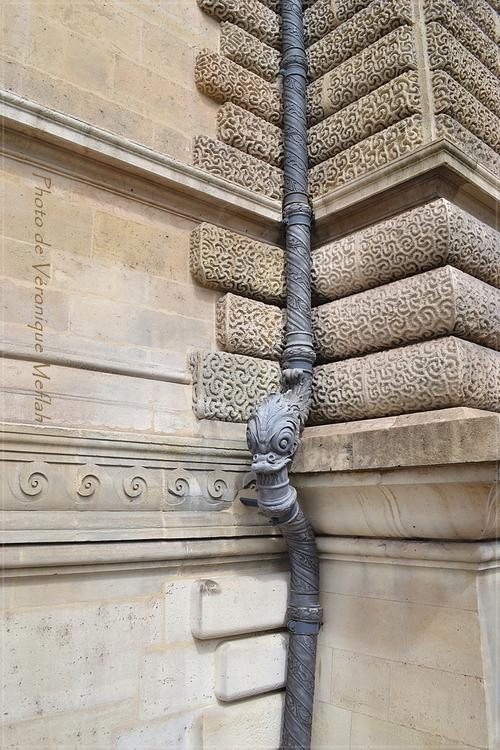 """Musée du Louvre : Descente de gouttière """"Dauphin"""""""