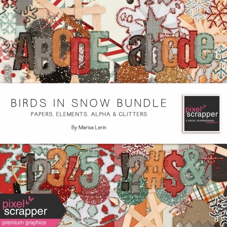 Birds in Snow Bundle