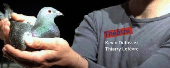 Pigeons ! à Wiers (B) le 8 avril