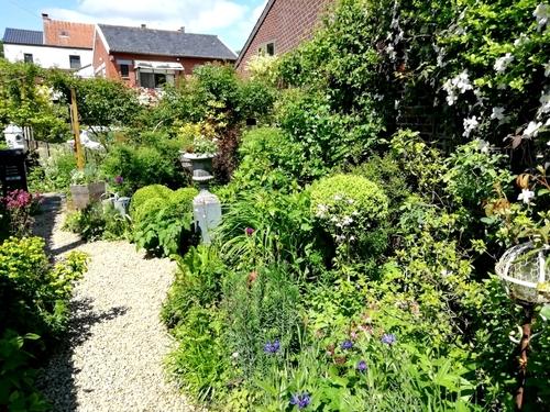 Garden..Sweet Garden