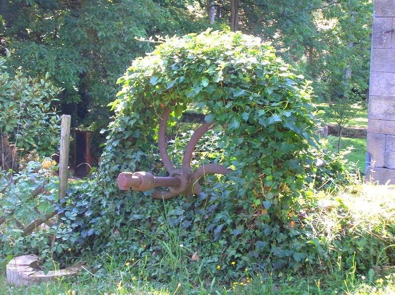 Moulin-de-Beaulieu-et-son-Etang-faune-et-flore-23.jpg