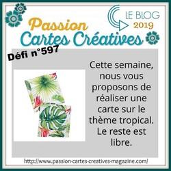 Passion cartes Créatives#597 !