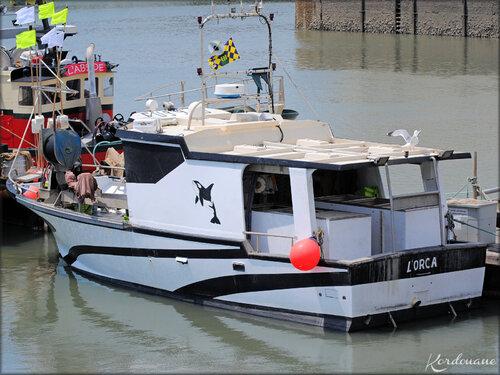 Photo bateaux de pêche du port de la Cotinière (Oléron)