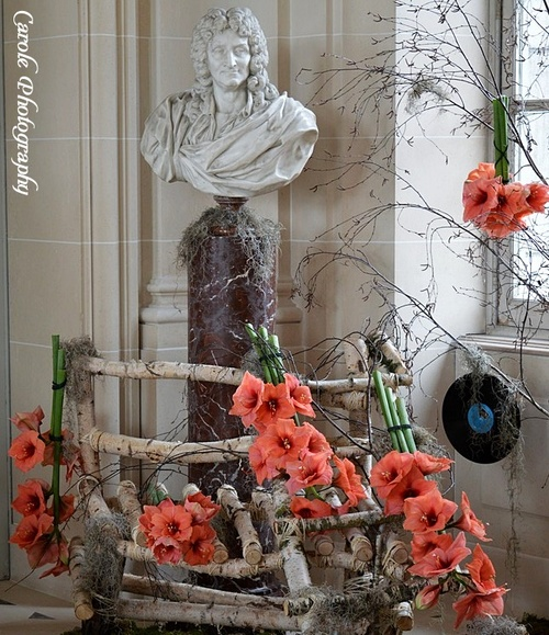 Amaryllis au château de Beloeil