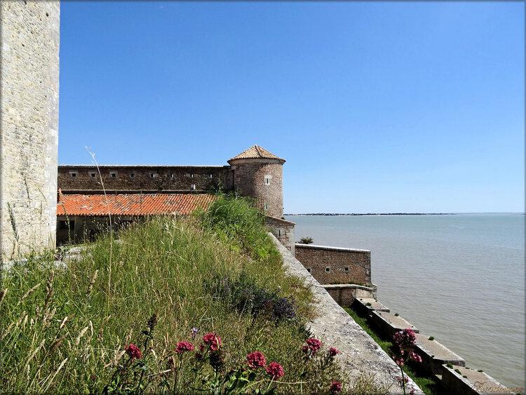 Photos de l'intérieur du Fort Vauban (Fouras)