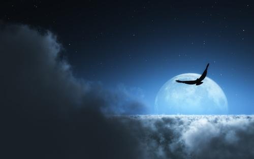 Vol de nuit, pad