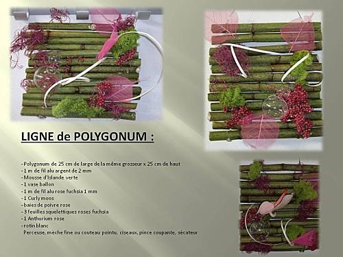 2011 oct tableaux floraux (2)