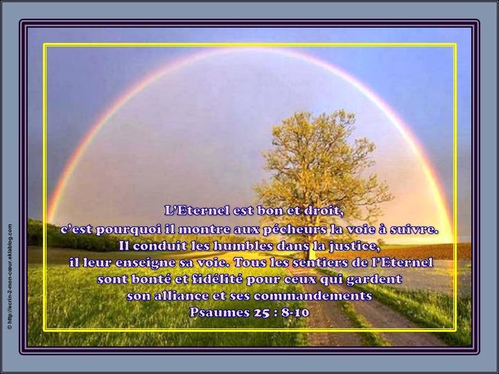 Tous les sentiers de l'Eternel sont bonté et fidélité - Psaumes 25 : 8-10