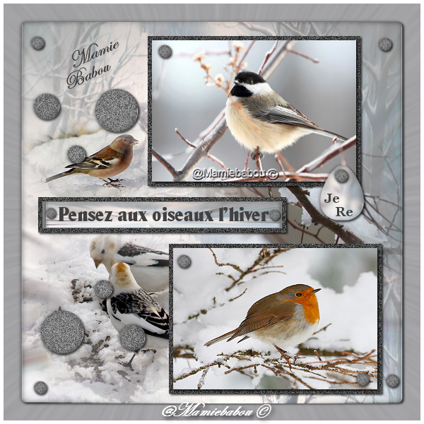 pensez aux oiseaux l'hiver