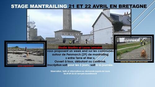 Vive La Bretagne et le Mantrailing !