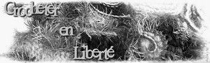crocheter_en_liberte.jpg