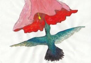 colibri 2 [640x480]