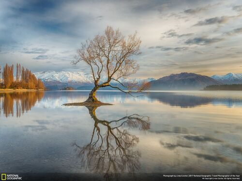 6. Wanaka, Nouvelle-Zélande