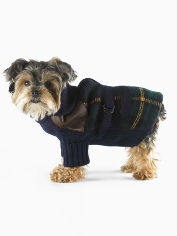 5dbc2d6cfd073 Ralph Lauren - Collection pour chiens - Tartangirl's Wardrobe