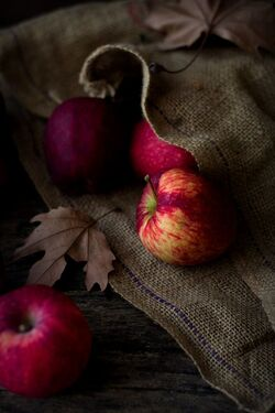 pomme automne