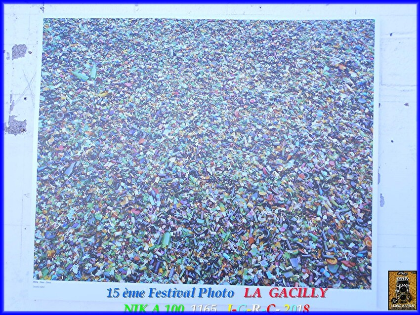 FESTIVAL  PHOTO  2018  LA  GACILLY   D   16/082018    1/1