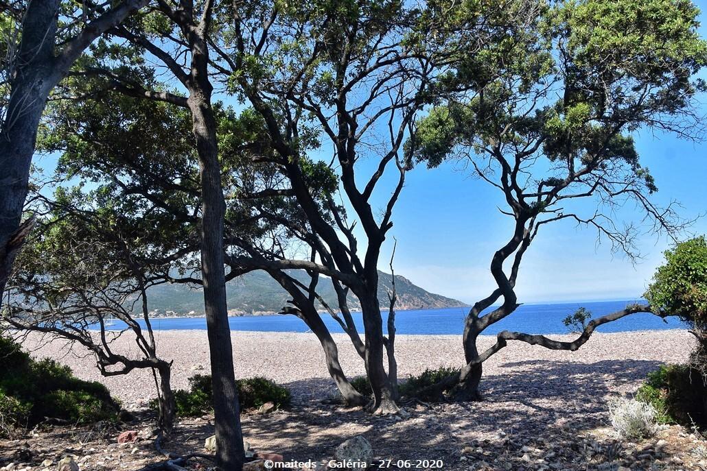 Grande plage de Galéria - Corse