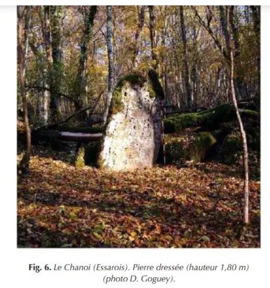 Deux pierres dressées de la forêt Châtillonnaise