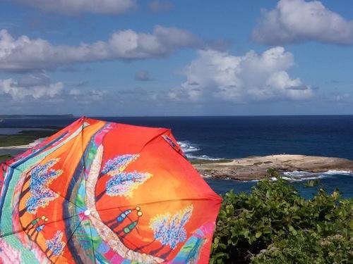 Parapluies et exotisme