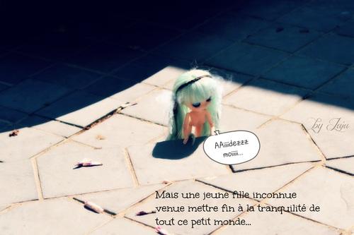 PhotoStory : Arrivée d'Ecume (Partie 1)