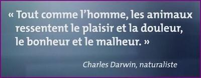 darwin-citation01.JPG
