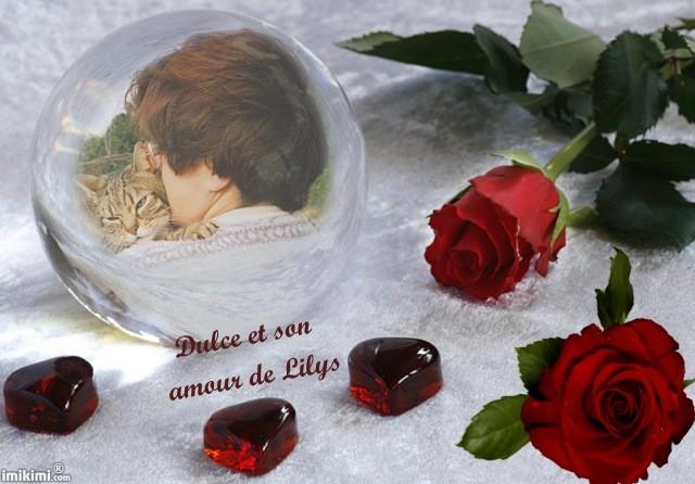 Lilys29.jpg