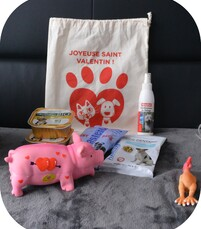LA DOGGY BOX SAINT VALENTIN