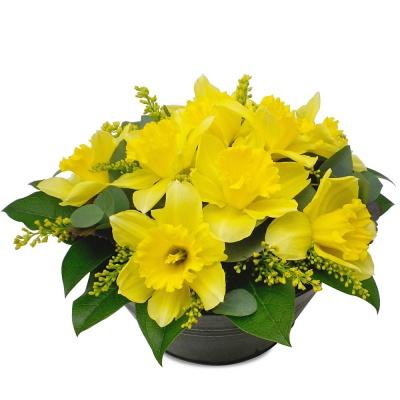 Les jonquilles du fleuriste<br>Composition Rayon de soleil