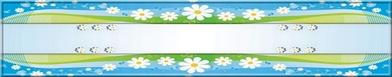 printemps bleu et marguerites