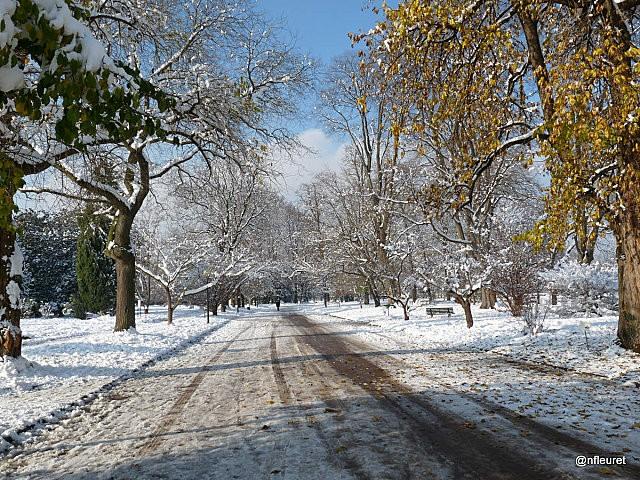 parc neige 2010 123 (19)