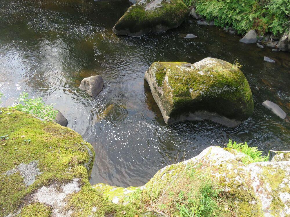 Lucunolé dans le Finistère