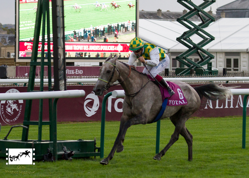 Qatar Total Arabian Trophy des Juments