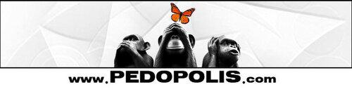 ➤ Newsletter PEDOPOLIS.COM