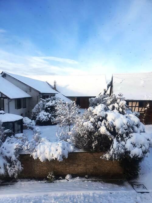 Neige, neige en Alsace 2