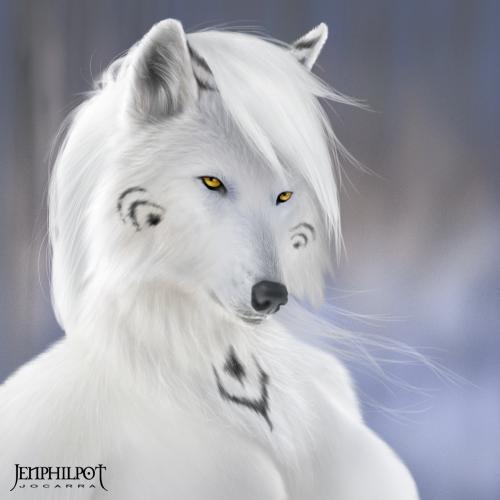 A farkas folytatása