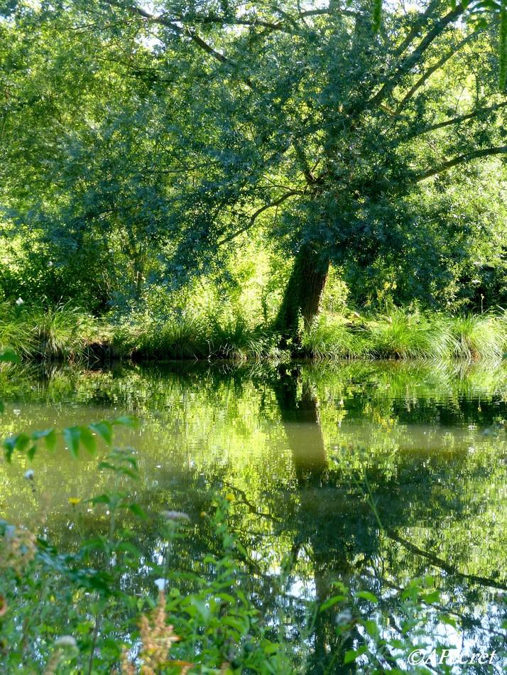 Amiens en pleine nature