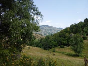 Vers l'Est, le village de Sauto, en rive gauche de la Tet